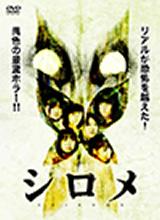 dvd_2010_img03.jpg